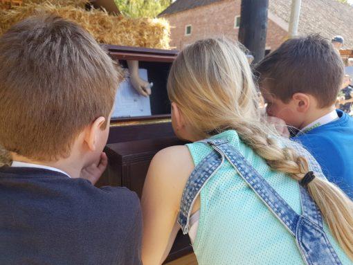 3 kinderen die aan het spiegelschrijven zijn.